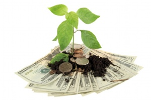 money-and-environment