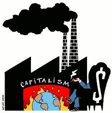 ecologicalcrisis