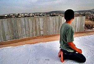 palestine-wallboy1