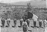زنان الجزایری در جنگ استقلال الجزایر