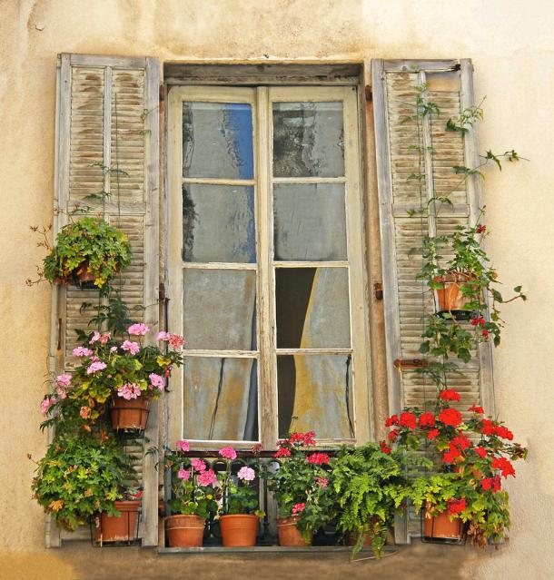 flower-window